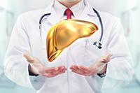 7 лабораторных исследований по оценке состояния печени — 600 руб.